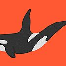 Killer Whale by Snockard