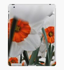 keukenhof gardens, the netherlands iPad Case/Skin