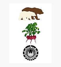 Bears Beets..... Photographic Print