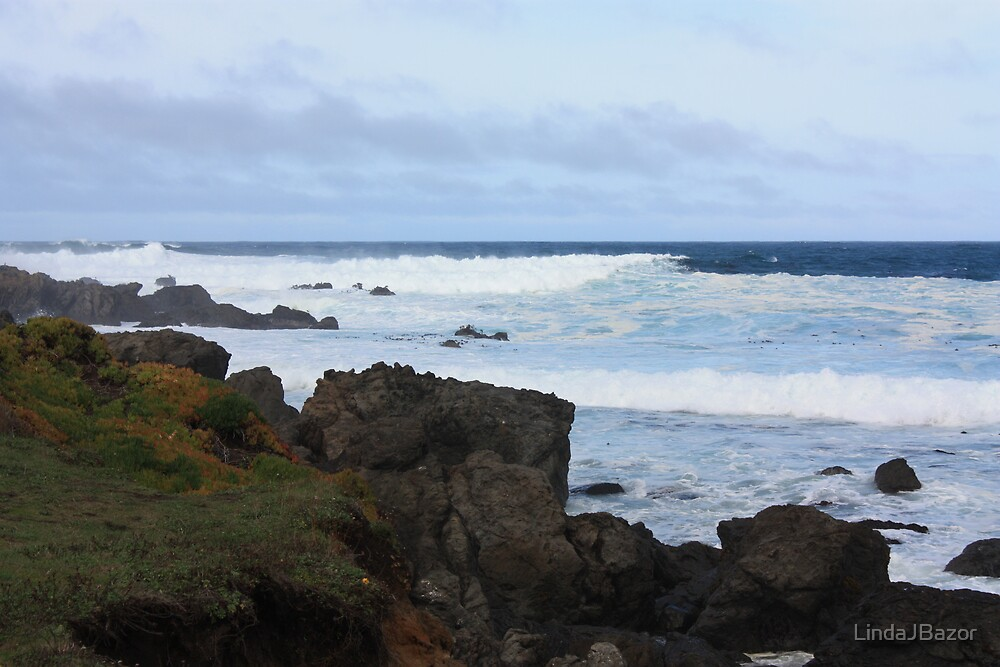 Mackerricher State Beach - Fort Bragg, CA by LindaJBazor