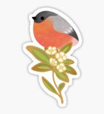 Eurasian bullfinch 2 Sticker