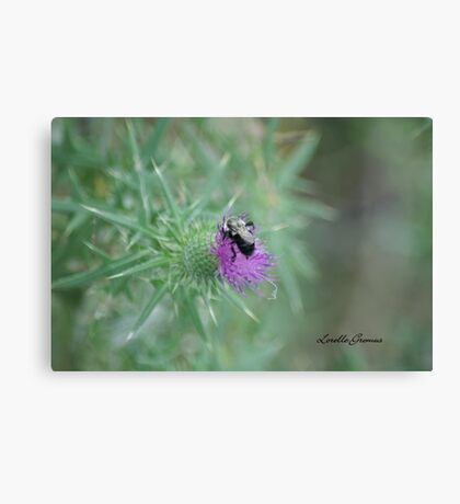 This Is Sharp Canvas Print