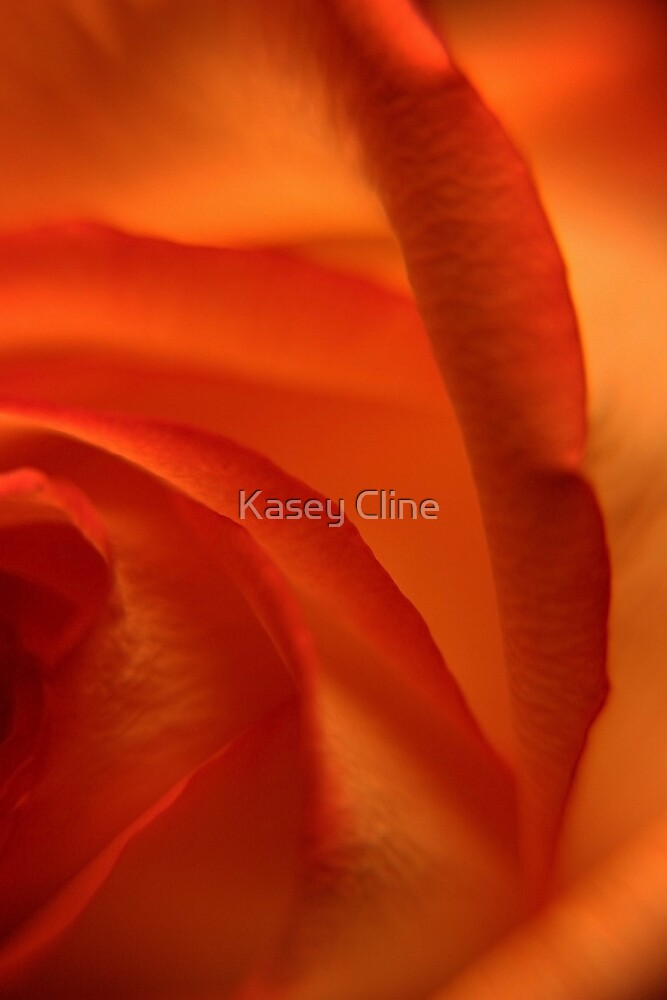 Passion! by Kasey Cline