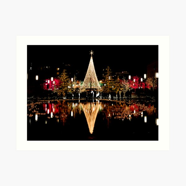 Christmas Reflections  Art Print
