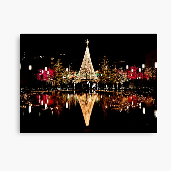 Christmas Reflections  Canvas Print