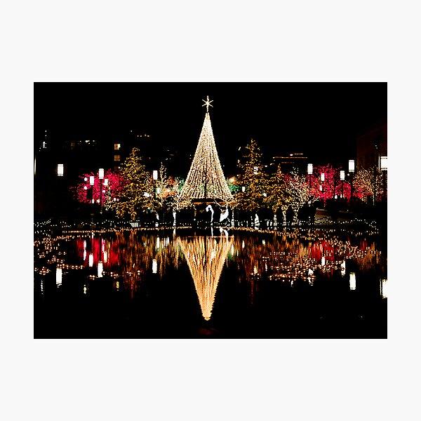 Christmas Reflections  Photographic Print