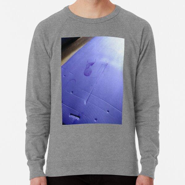 Blue Lightweight Sweatshirt