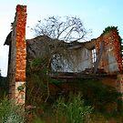 Tree House by Pamela Jayne Smith