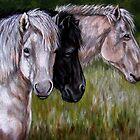 Island Ponys von Susan McKenzie Bergstrom