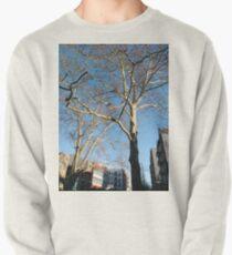 Tree Pullover