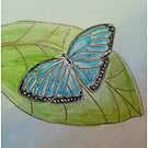 Blue Morpho Butterfly by Gretchen Smith by Gretchen Smith