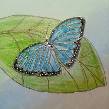Blue Morpho Butterfly by Gretchen Smith by tallartist