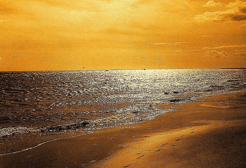 the sea. by ipli