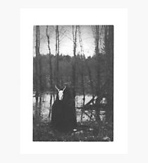 SWAMP WITCH Photographic Print