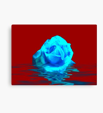 Rose #5 Canvas Print