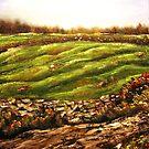 """Meadow in Tullycrine"" by Bridget Beckley"
