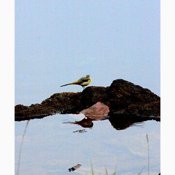 floating life by HarryHutchin
