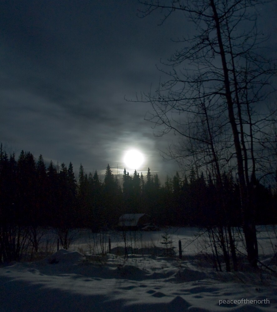 Moonlit Countryside by peaceofthenorth