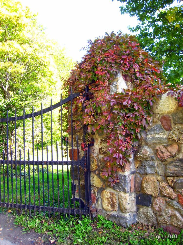 Overgrown Gate by girljo818