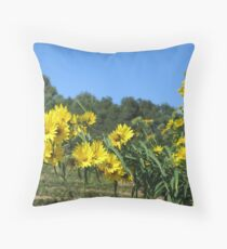 Sonoma Vineyard With Daisies Throw Pillow