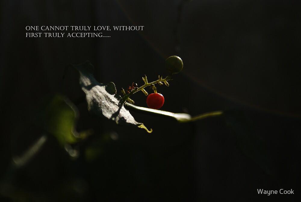 True Love by Wayne Cook