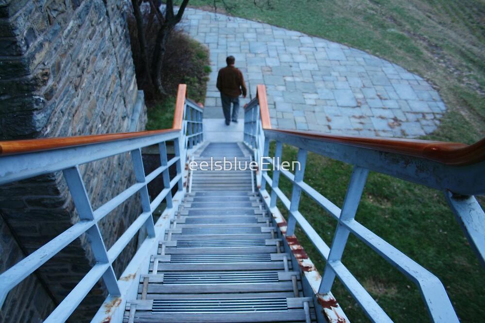FDR's Back Steps by eelsblueEllen