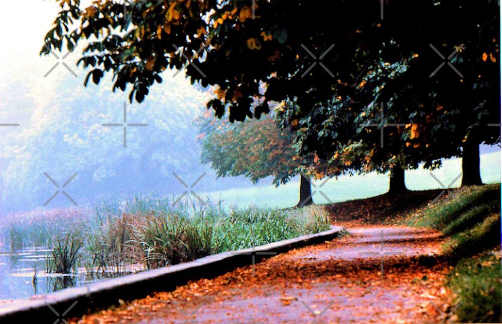 autumn in the park by dnlddean
