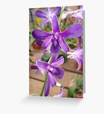 I would call this one, Sparkle Plenty! Greeting Card