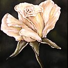 """White Rose"" - Oil Painting by Avril Brand"