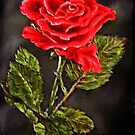 """Red Rose"" - Oil Painting by Avril Brand"