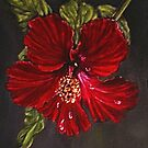 """Poinsettia"" - Oil Painting by Avril Brand"