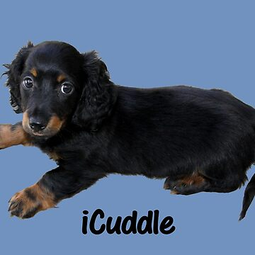 Cute iCuddle Long Hair Dachsund by Shana1065
