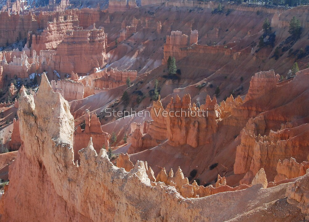 Bryce Canyon Afternoon by Stephen Vecchiotti