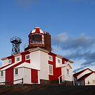 Cape Bonavista Lighthouse by Brian Carey
