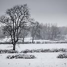 Clifton-Upon-Dunsmore Snow scene  by bywhacky