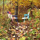 Sitting Place by Michelle Hitt