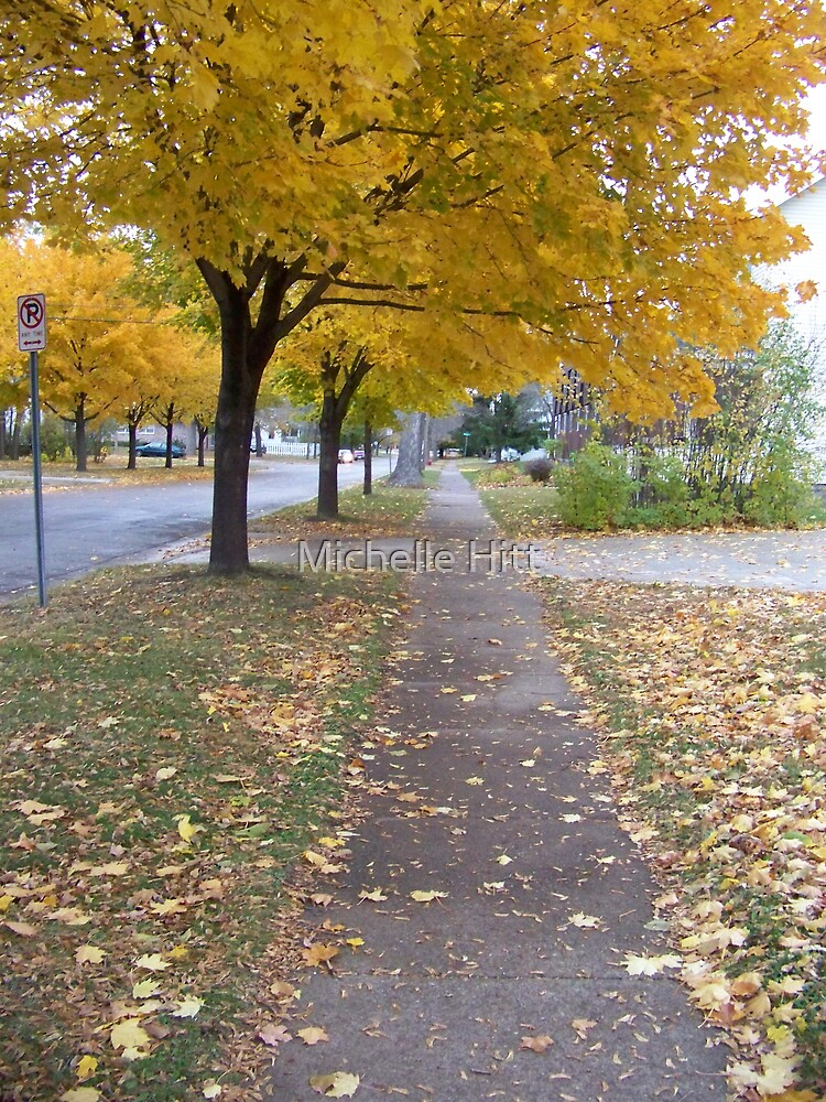 Walking Path by Michelle Hitt