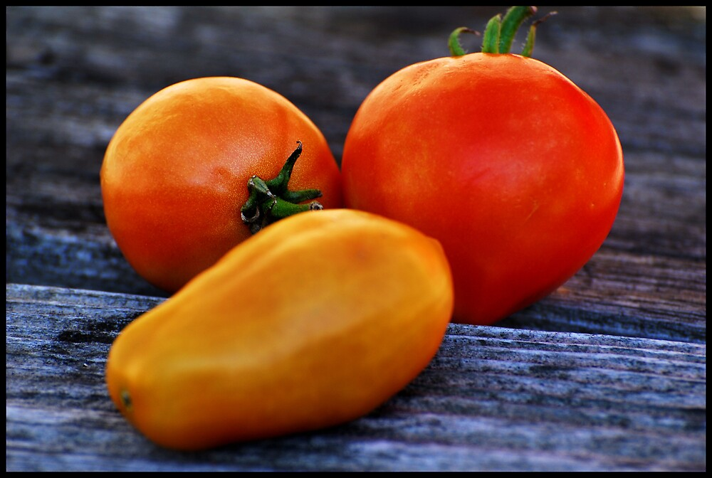 Tomatoes by ULHALL