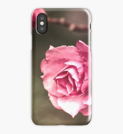 Beauty is a Light in the Heart iPhone Case
