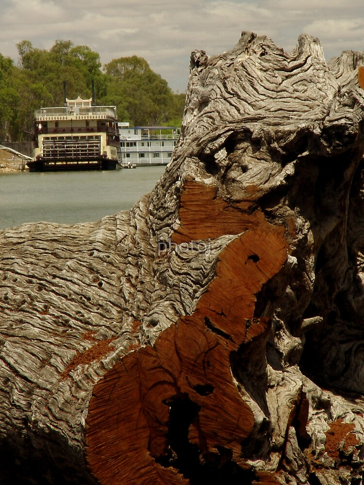 photoj S.A. Murray River by photoj