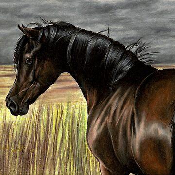 Storm Weaver by SilverfoxxArt