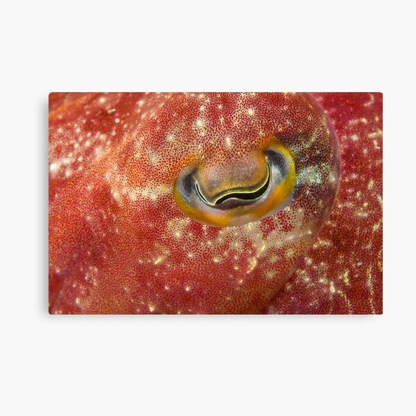 Reaper Cuttlefish Eye Canvas Print