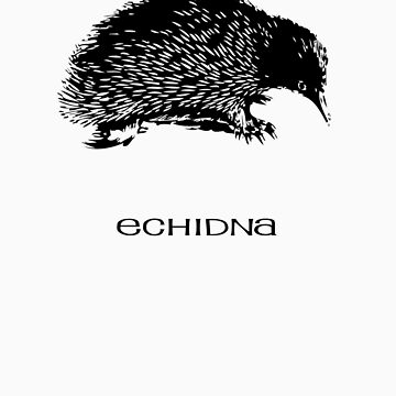 Echidna by SuperDeathGuy