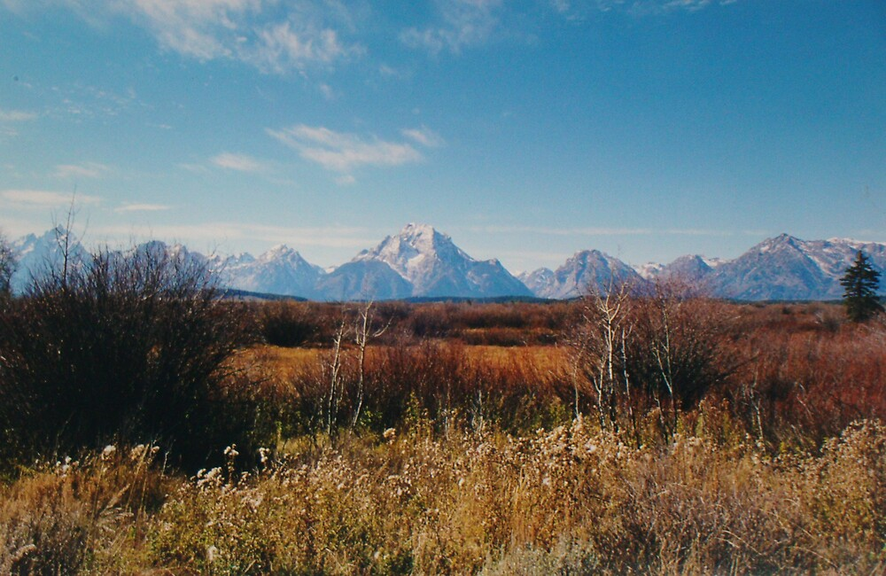 Grand Tetons by Jerry Stewart