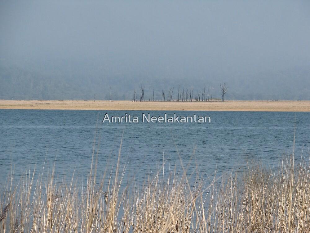 Past Horizon by Amrita Neelakantan