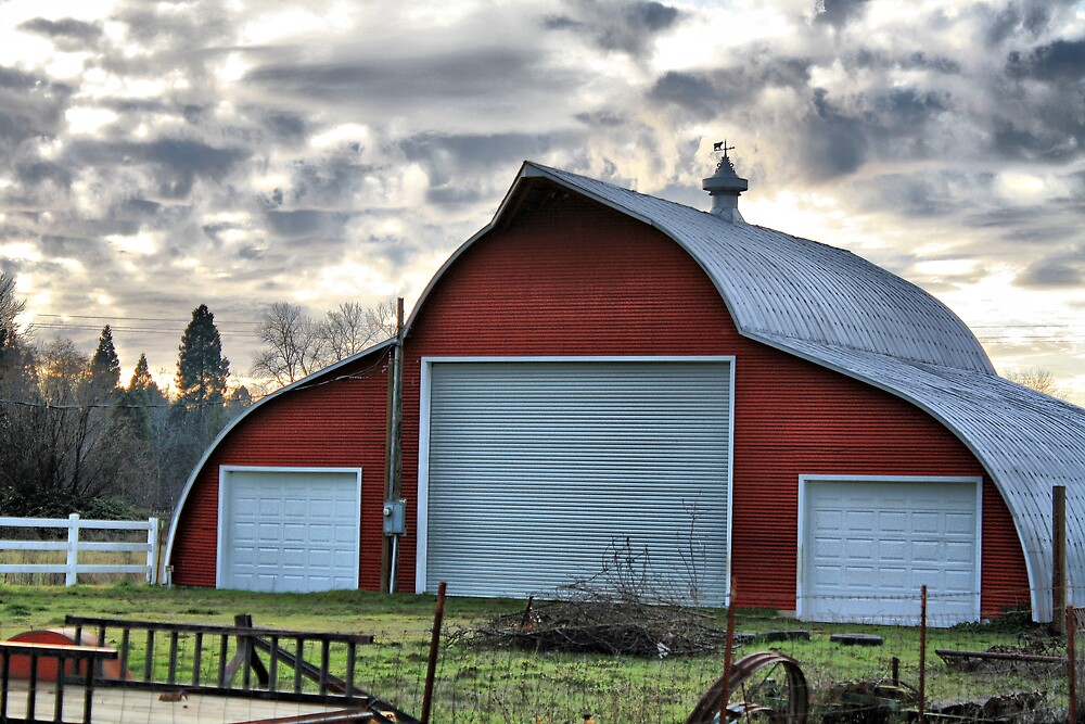 Red Barn by Stephen  Van Tuyl