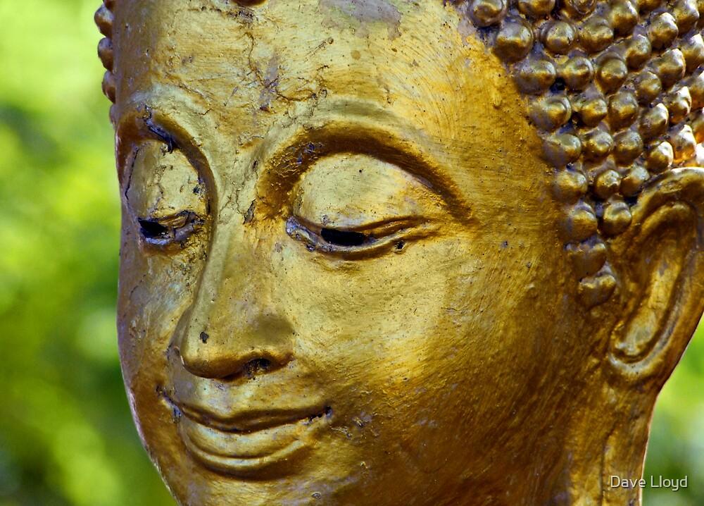 Buddha Face by Dave Lloyd
