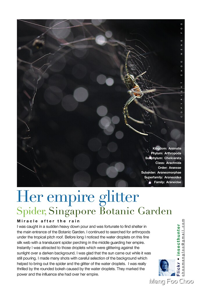 Her Empire Glitters by Meng Foo Choo