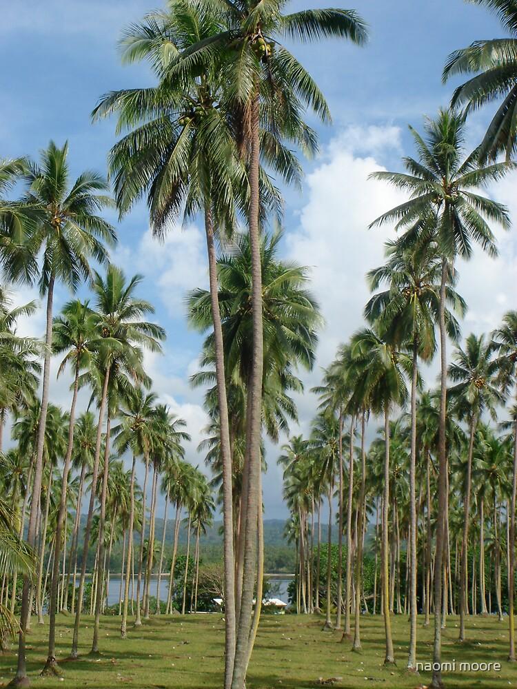Lapita Plantation Aore Island by naomi moore