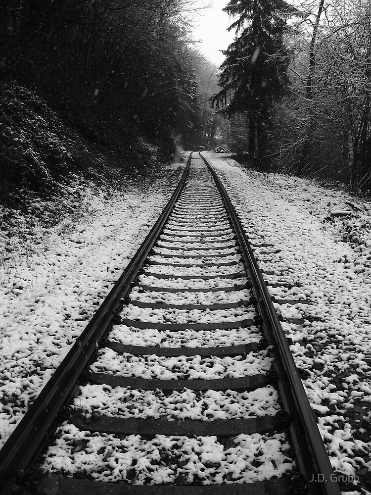 Railroad Tracks, Kandern, Germany 2008 by J.D. Grubb
